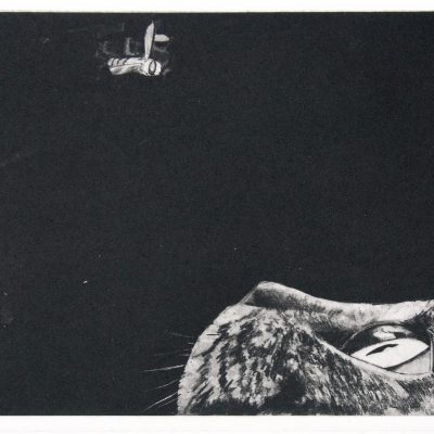 Sjoerd Tegelaers, I am all alone this time around, a4 sized photopolymer etching, 10 prints, 2015